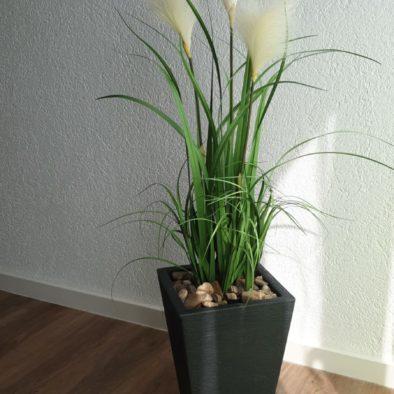 Ferienwohnung Deko Pflanze